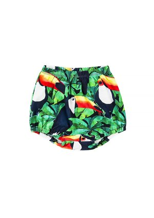 BLOOMERS EXOTIC TOUCAN
