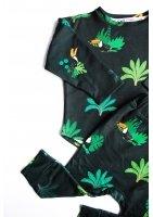 bluz jungle toucans