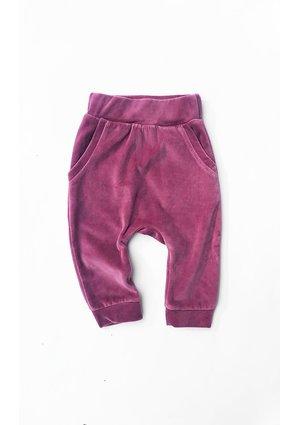 Spodnie z weluru Fioletowe